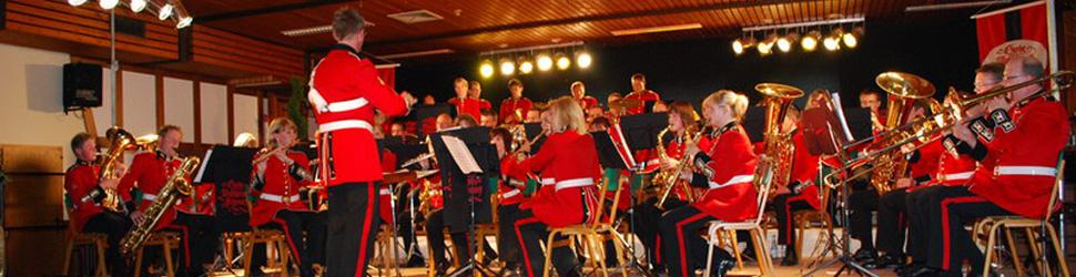 Konzert-970-2009.jpg